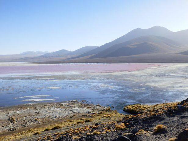 Fest der Farben und Formen an der Laguna Colorada